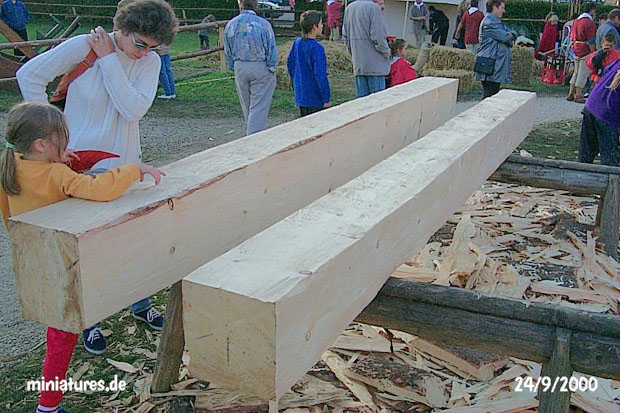 A day's work for the tignarius (carpenter): beams hewn out of large trees